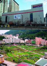 Costco South Corea / Urban Farming Taiwan